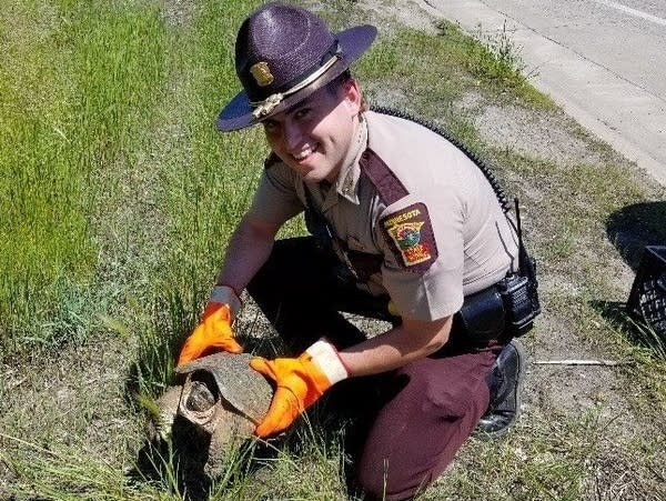 State trooper Ben Barker helped a turtle found on a highway to safety.