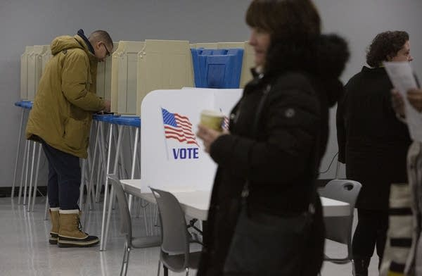 A person stands in a booth to vote.