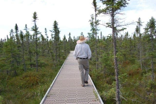 Jerry Stensing walks the bog