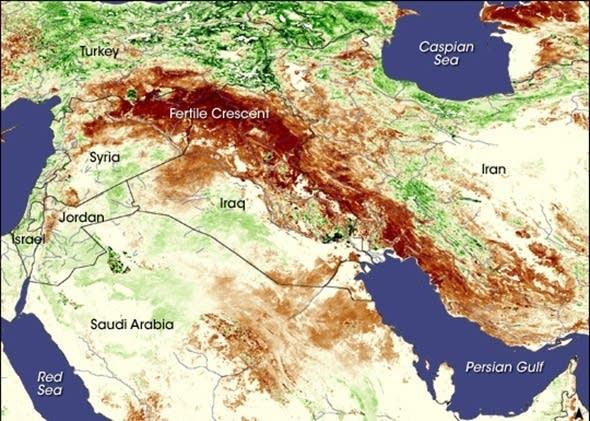 CC Iraq