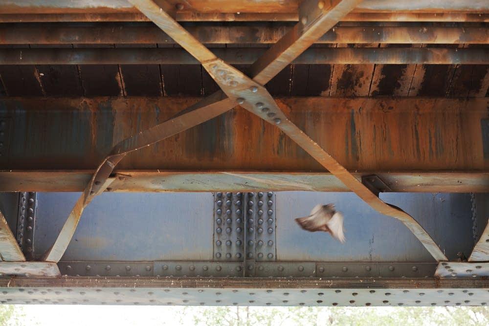 Supports under a railroad bridge