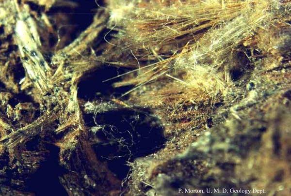 Mineral fiber