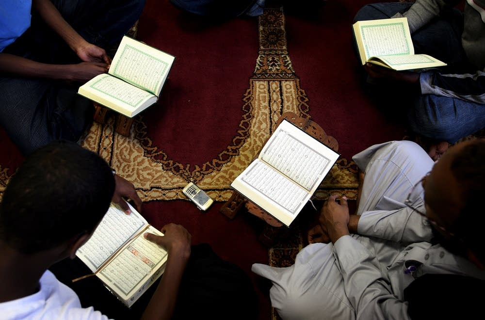 Studying the Qur'an