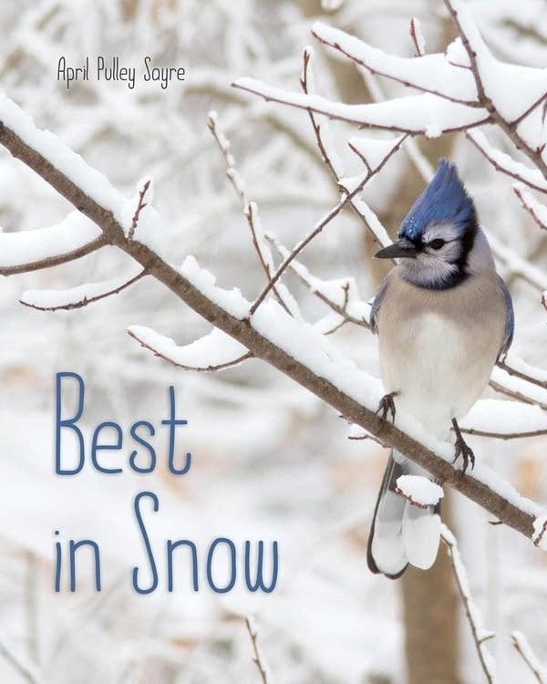 'Best in Snow' by April Pulley Sayre