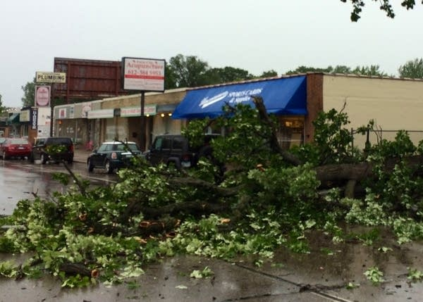 Downed tree in Richfield