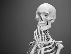 A skeleton.