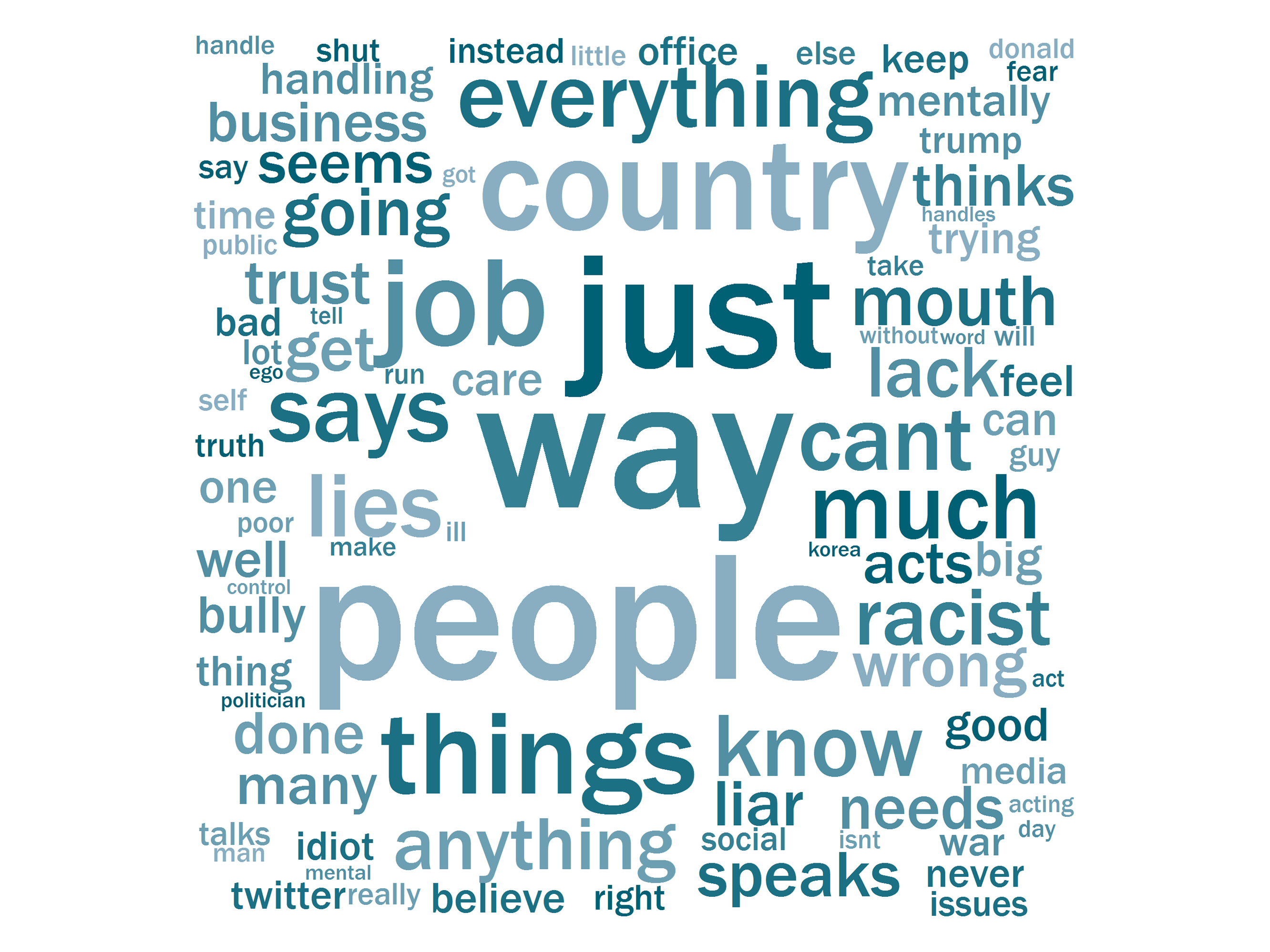 Words Minnesota Trump opponents use to describe the president.