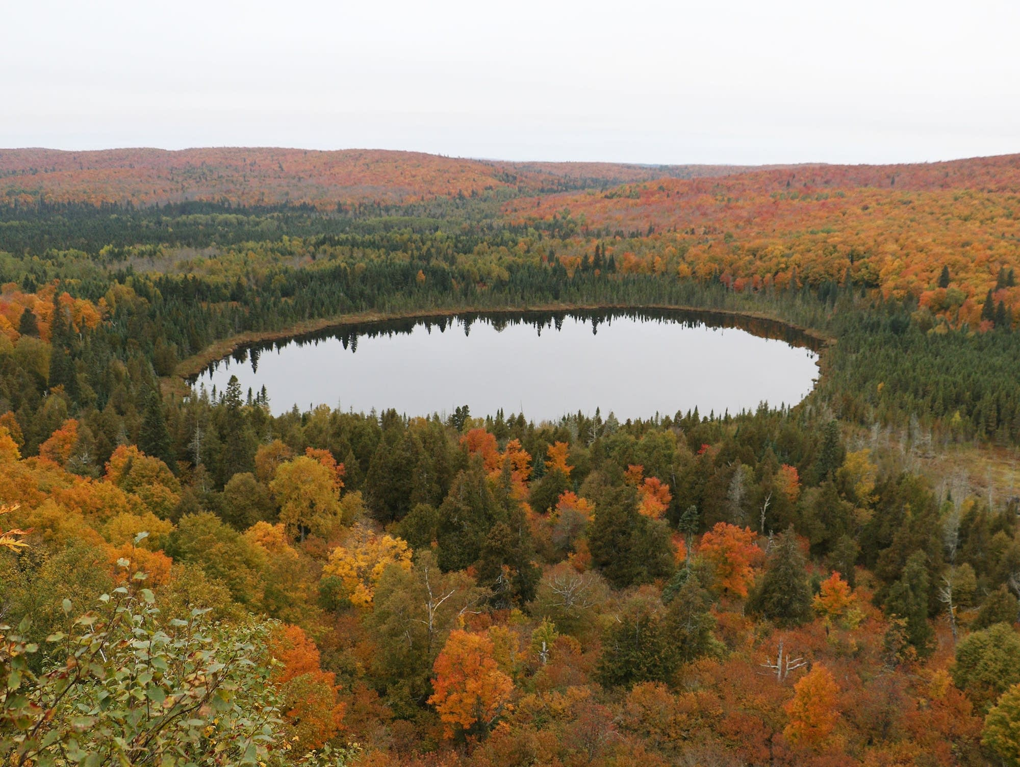 Fall colors in northern Minnesota
