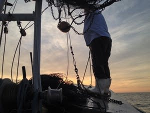A fisher pulls in his shrimp catch off the Louisiana coast.