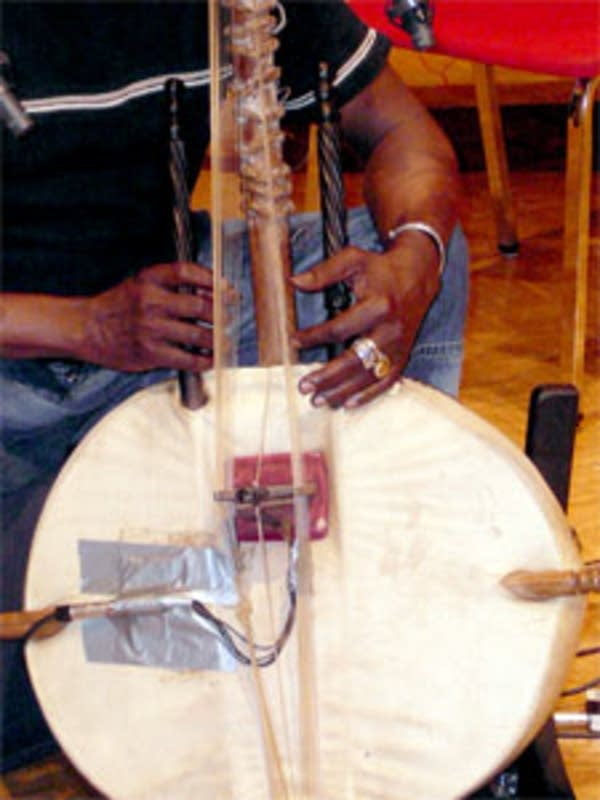 Close-up of Tourmani Diabate's kora
