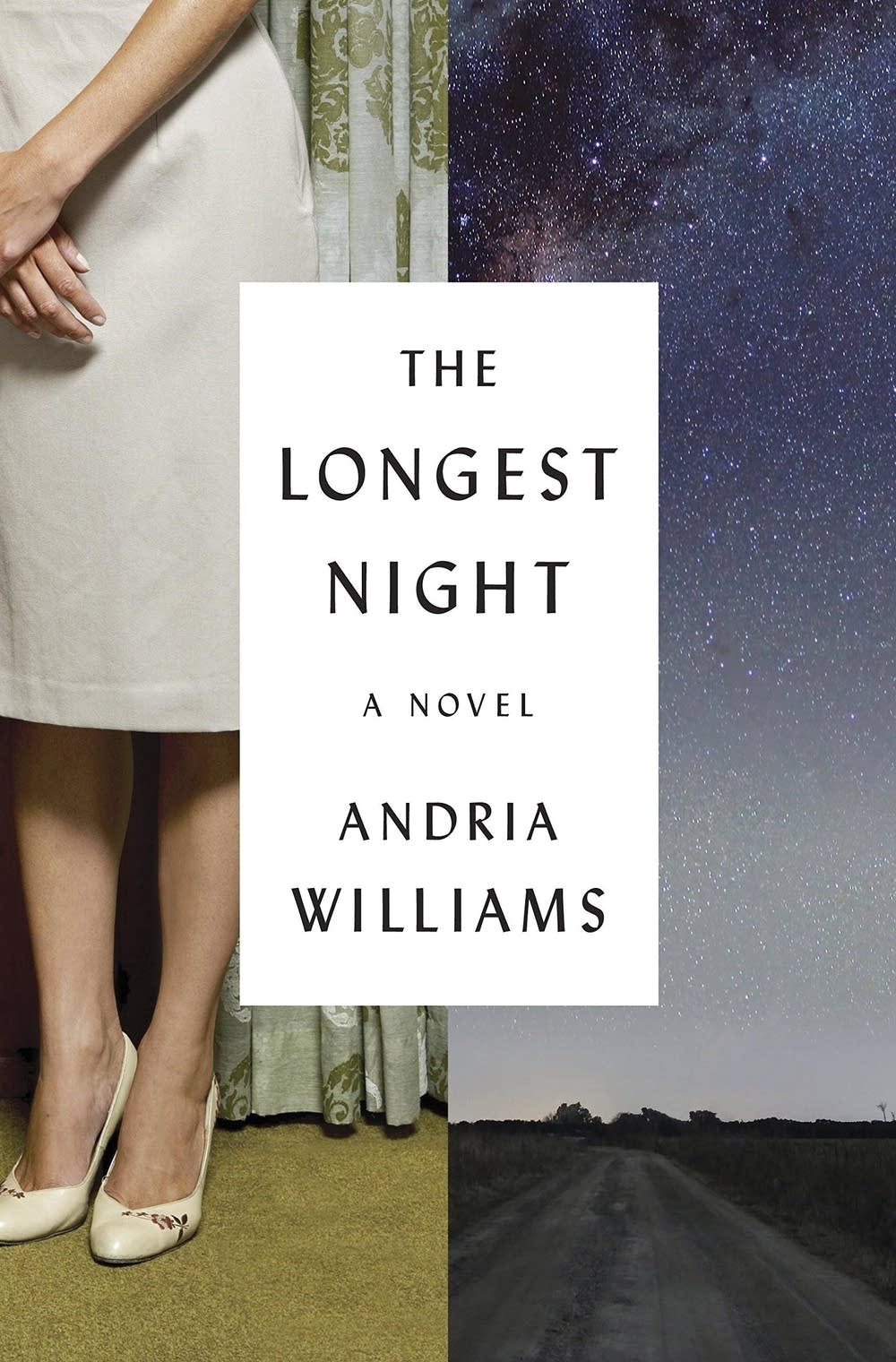 """""""The Longest Night"""" by Andria Williams"""