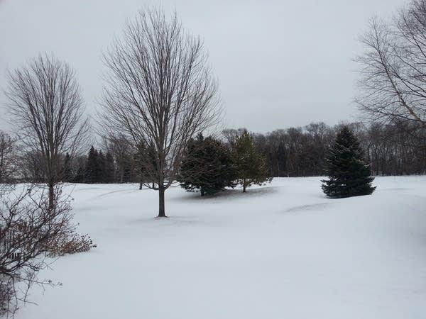 1-25-snow