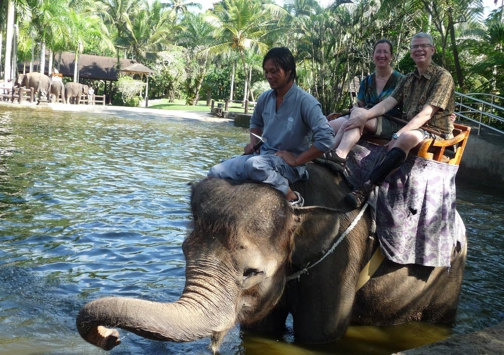 Aboard an elephant