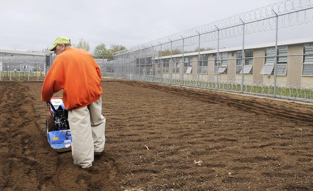 Prison garden