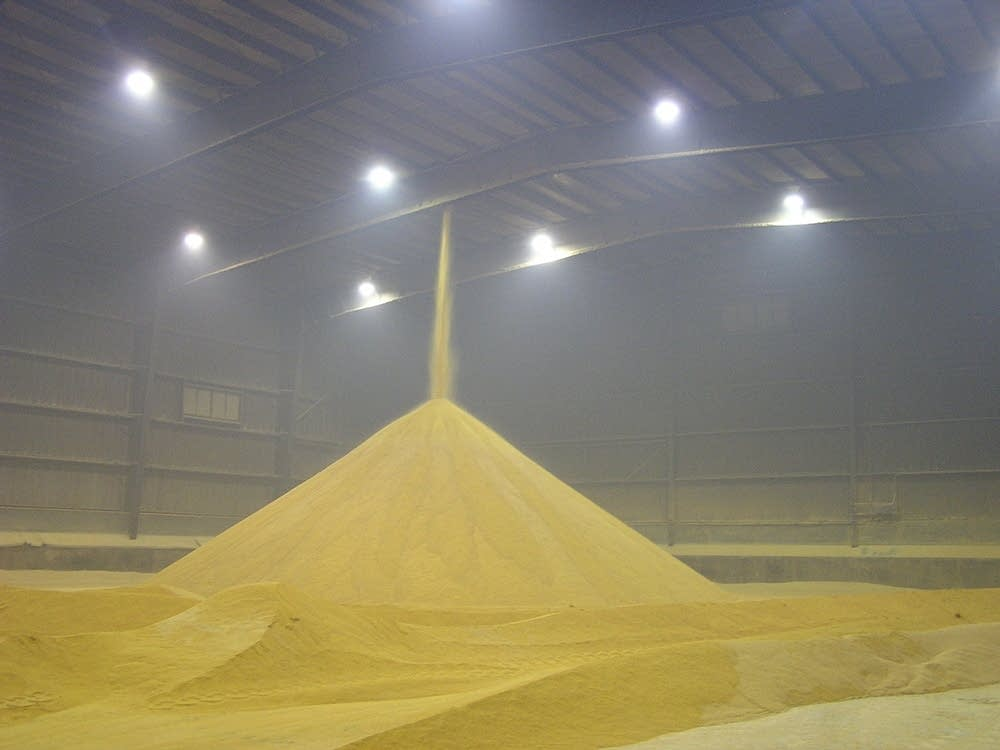 Distillers grain, a by-product of the ethanol process