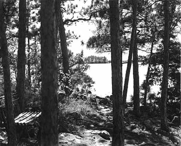 View of Lake Kabetogama from Lute's Resort, 1937.