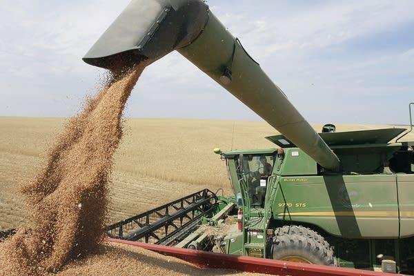 Wheat harvest is in full swing near Patterson, Wash.