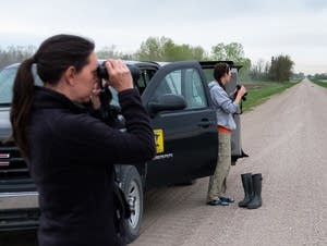 Charlotte Roy and Megan Zagorski scope out a field looking for seed spills.