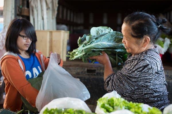 Hmong farmers