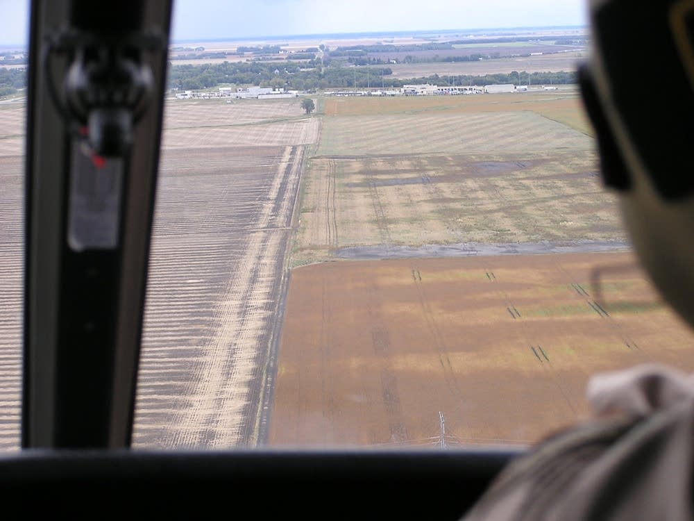 Border fields