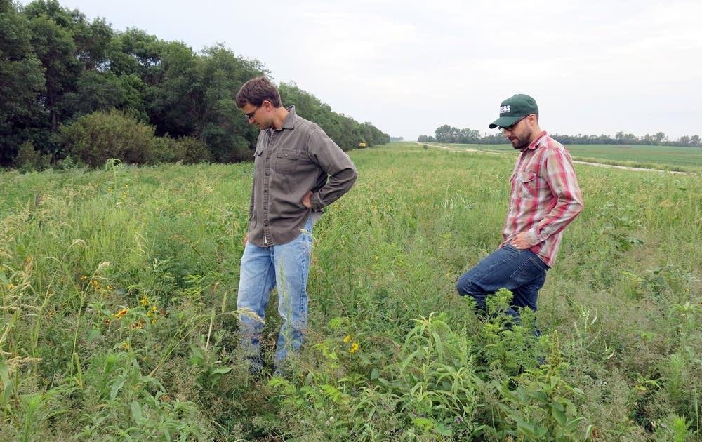 USGS researchers Clint Otto and Matthew Smart