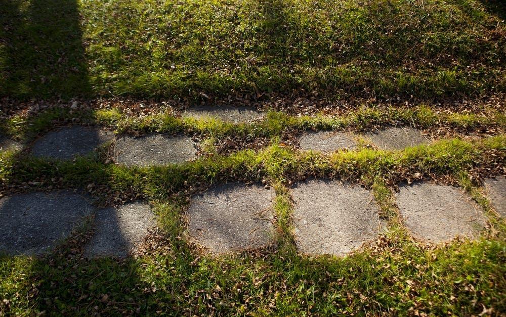 Overgrown sidewalk