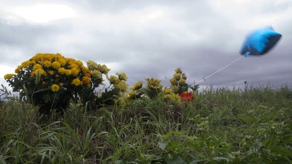 A memorial  left near the farm in Paynesville.