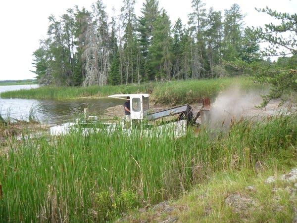 Crews work to remove invasive, hybrid cattails
