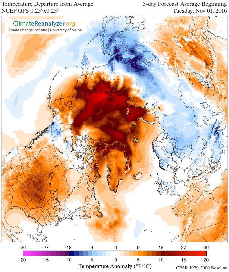 1101-arctic