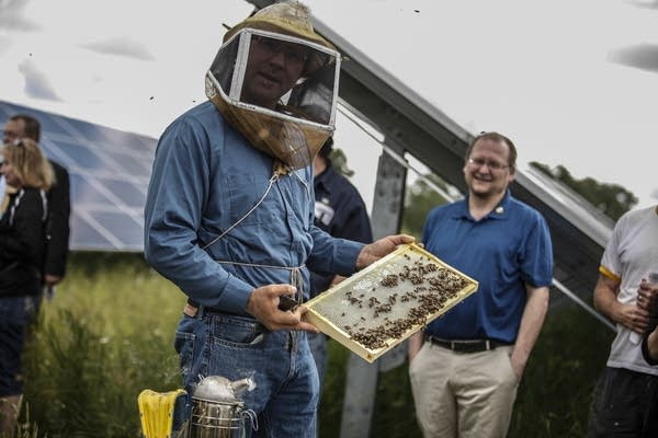 Connexus Energy is now producing honey in Ramsey, Minn.