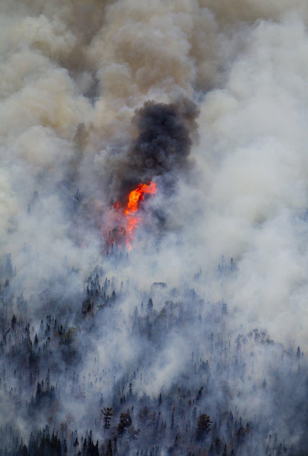 100,000 acres burned