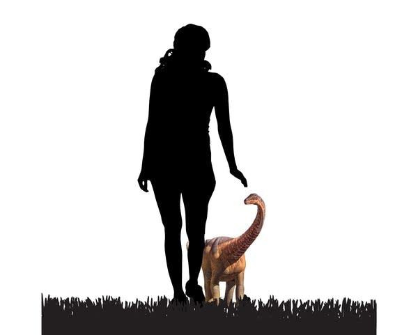 Relative size of baby titanosaur
