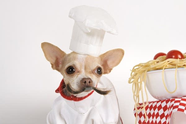 A ridiculous photo of a dog dressed up like a chef with a bowl of pasta.