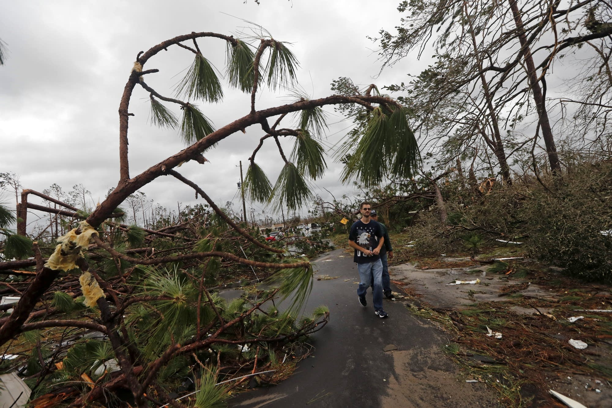 People walk through downed trees in a heavily damaged neighborhood.