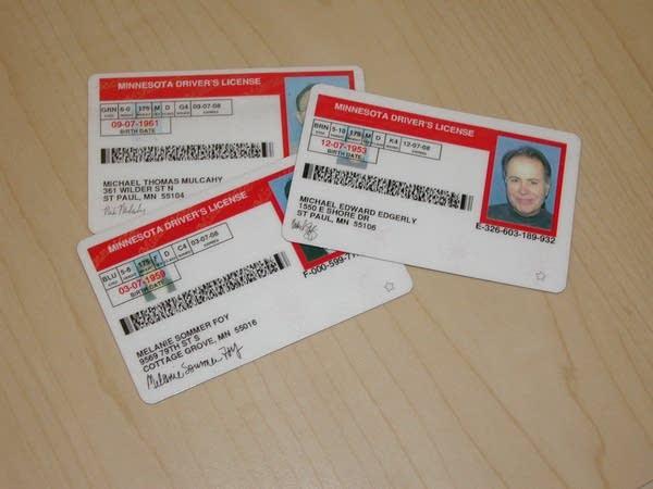Minnesota drivers licenses