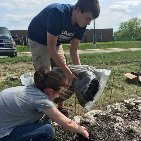 Environmental club members plant native plants in the school garden.