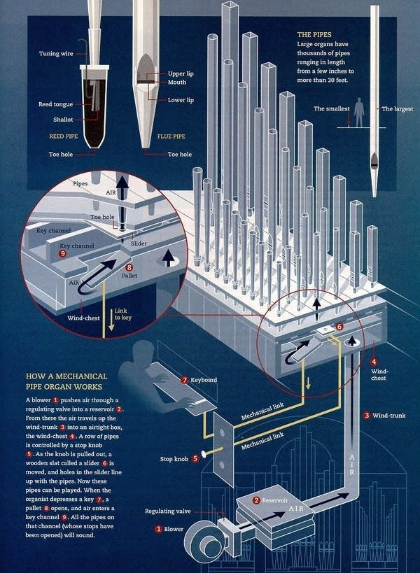How a pipe organ works