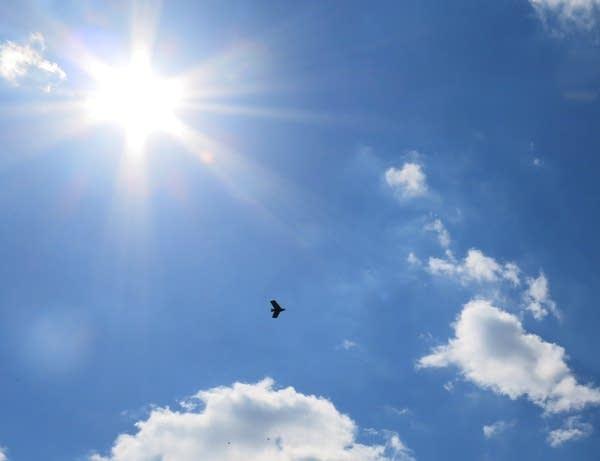 A drone flies over a North Dakota farm field.