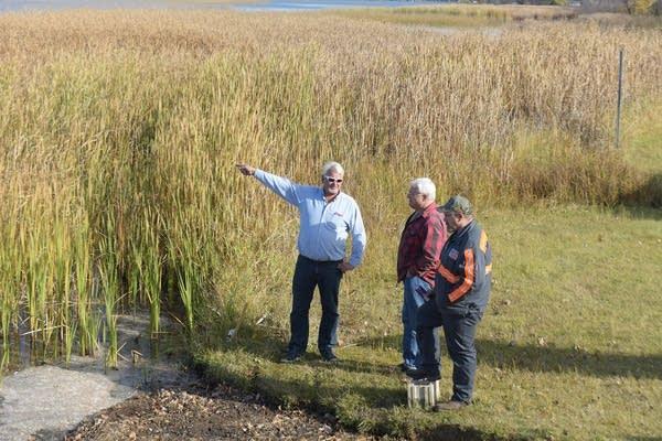 Steve Stohr (left) of Peterson Towing points to the monstrous bog Thursday.