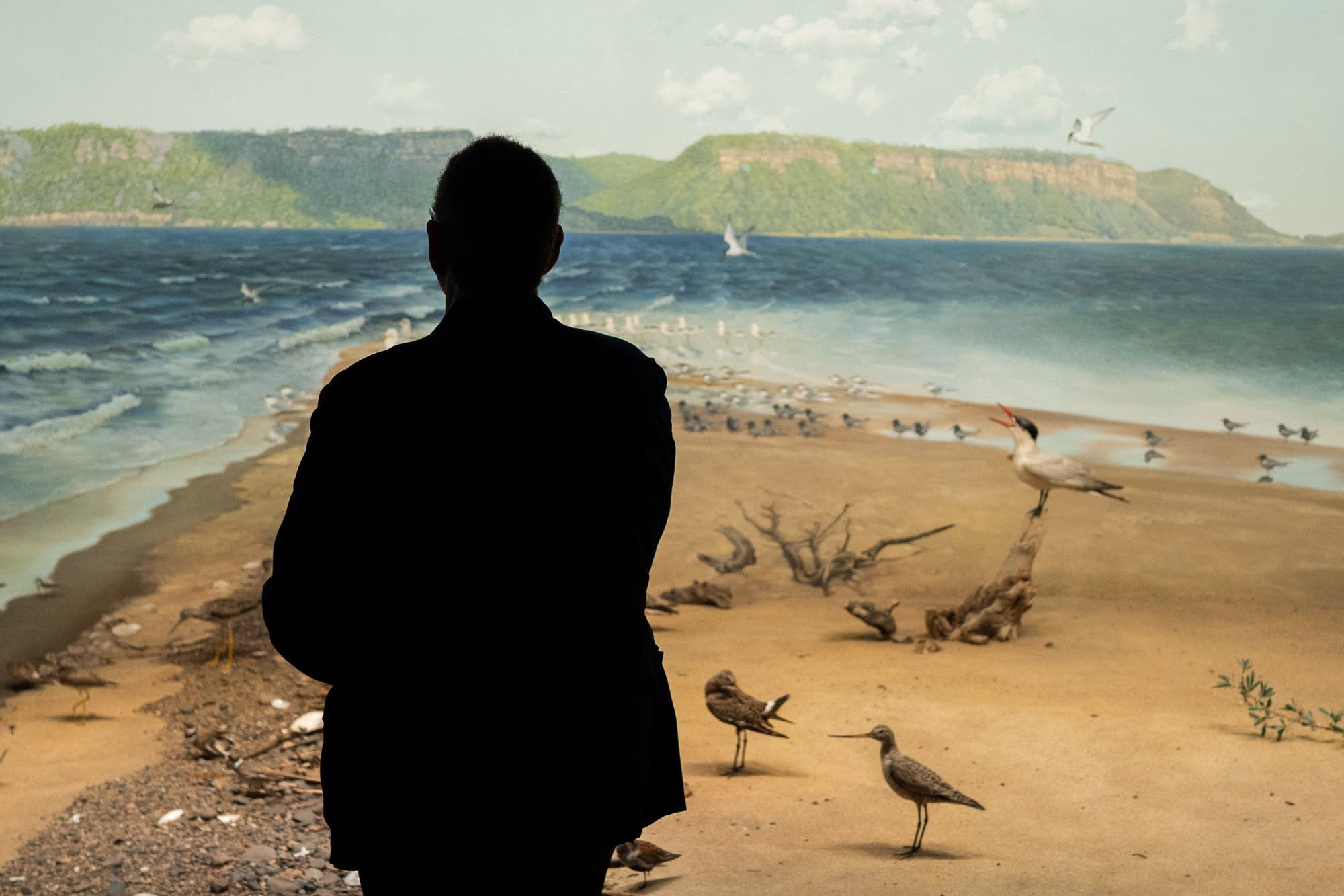 A man stands in front of a diorama of Sand Point on Lake Pepin.