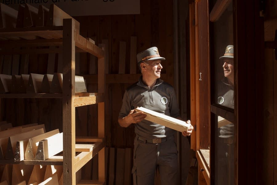Experts can tell how a piece of wood will resonate
