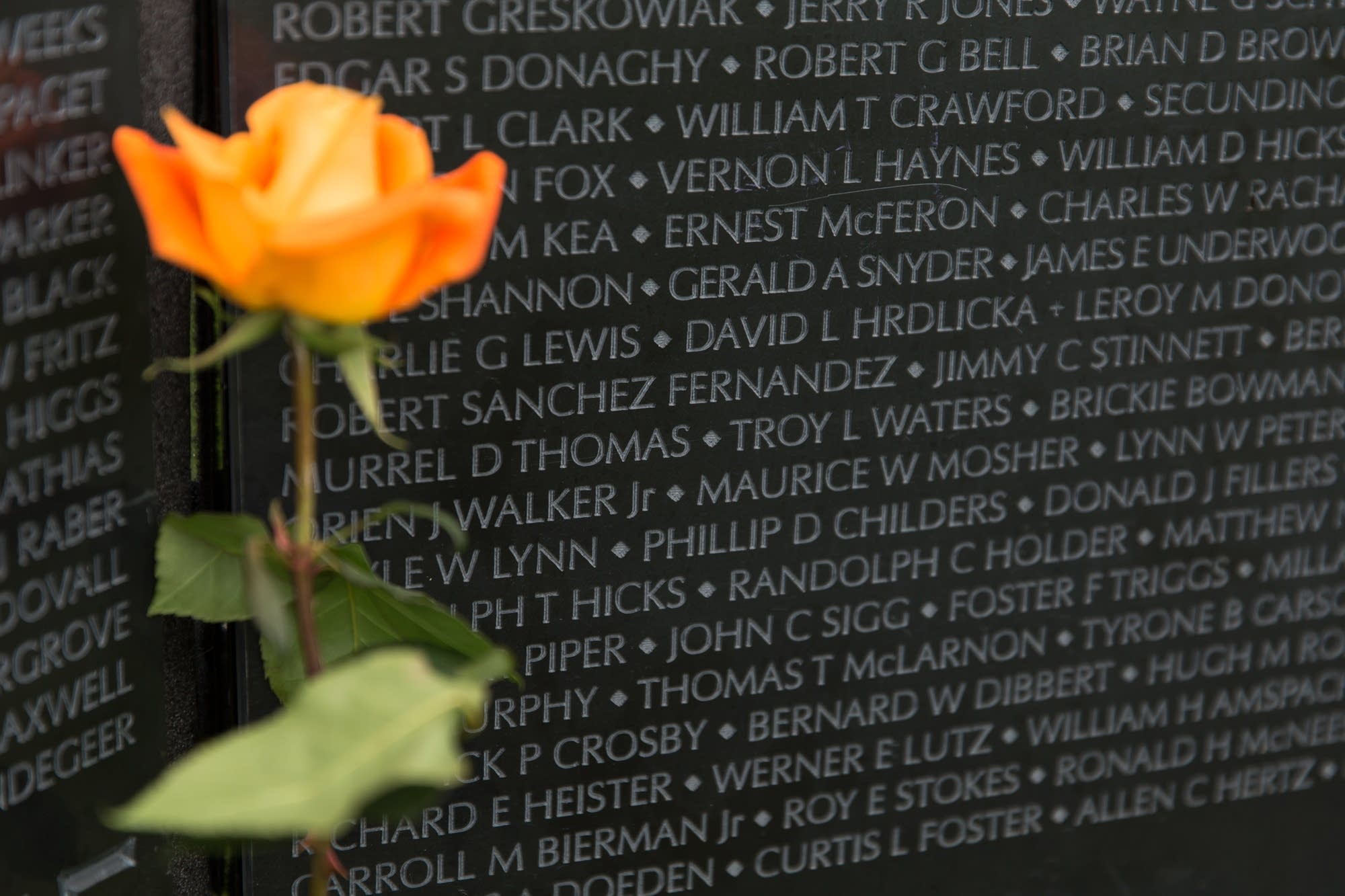 A rose sits in front of The Wall that Heals memorial