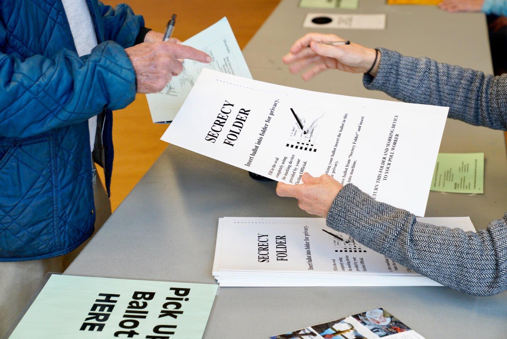 People vote at Bloomington City Hall in Bloomington.