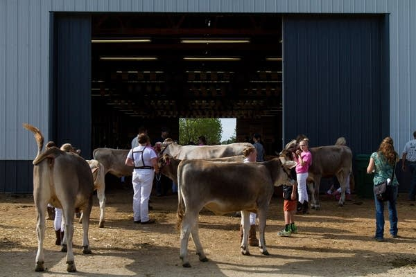 Kids waited for the start of judging.