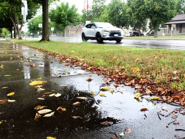 Puddles are seen on a sidewalk after a rain
