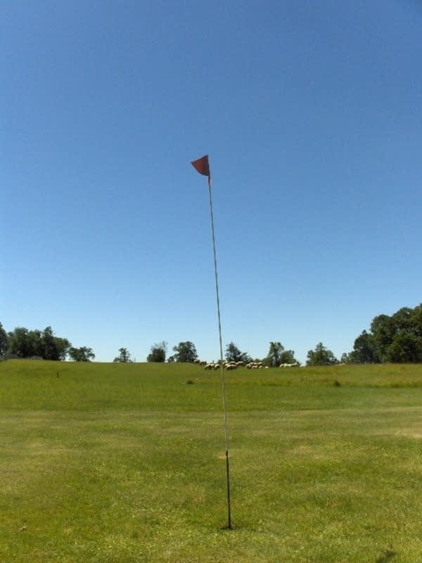 Balhepburn Golf Course