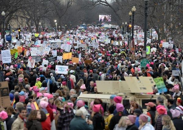 Washington, DC: Demonstrators protest on the National Mall.